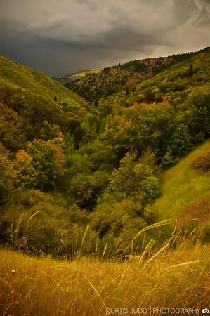 Lambs Canyon Storm 1