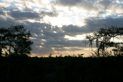 Sunset, Everglades