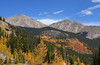 Fall colors near Cottonwood Pass, September 28 2011.