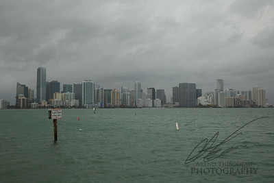 Miami skyline in the mist