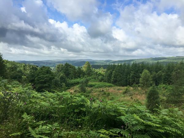 Graythwaite Estate, Lake District