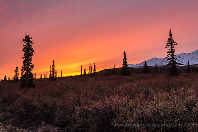 The Final Curtain Denali National Park Alaska © 2014