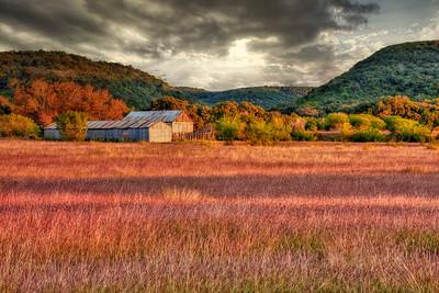 Fall near Utopia, Texas