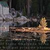 Mosquito Lake - Alpine County, California