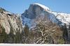 Yosemite Fire Falls-0259