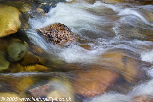 Water in Motion, Glenfeshie,Scotland