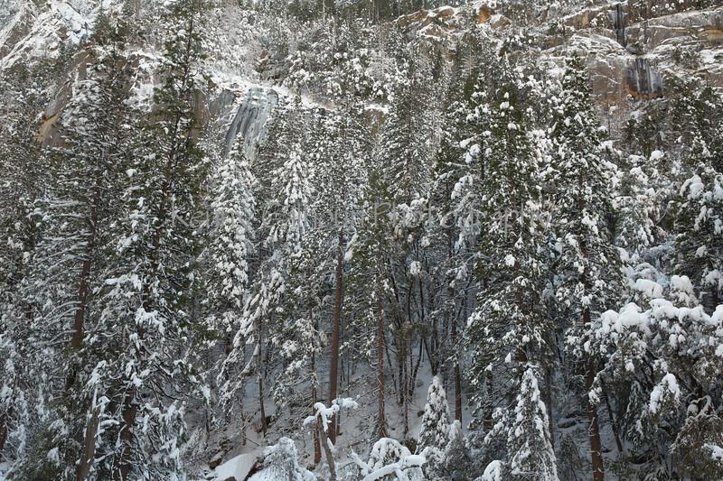Yosemite Fire Falls-9976