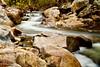 Escondido Creek, Elfin Forrest