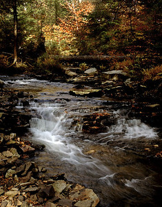Rickets Glen St Pk Pa. Fall 2006