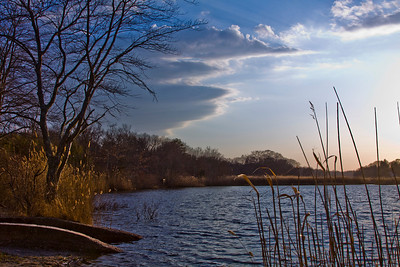 Peconic River, Edwards Ave., Calverton,  New York - 03/12/2011