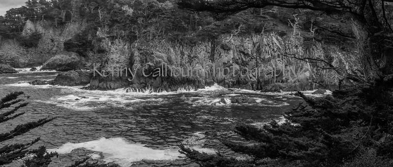 Point Lobos _N5A8382-Edit