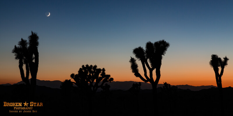 Crescent moon at sunset.  Joshua Tree National Park