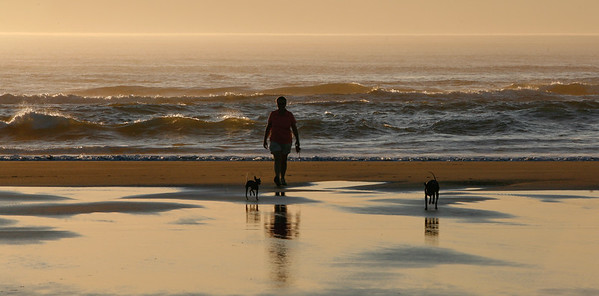 Long Beach, Washington-5