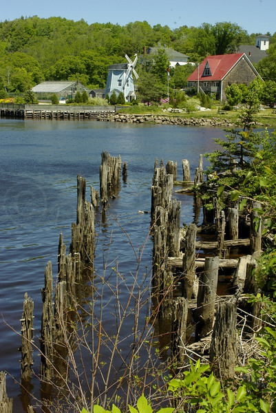 Pier pilings leading to Windmill.