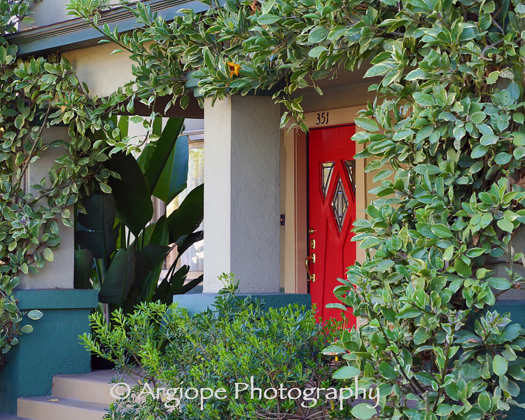 House with a Red Door