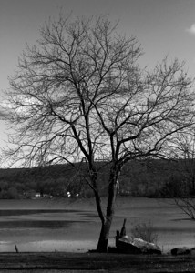 Lake Musconetcong Stanhope, NJ