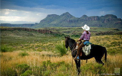 Big Bend Ranch State Park Cattle Drive.