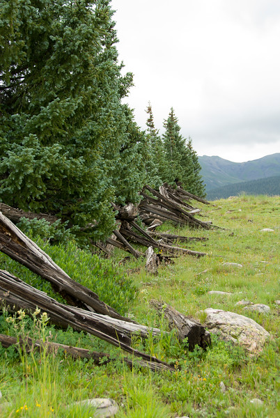 2007 Colorado Trip - Silverton Loop Old Split-Rail Fence