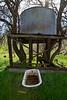 Bruces Oak Valley-1397