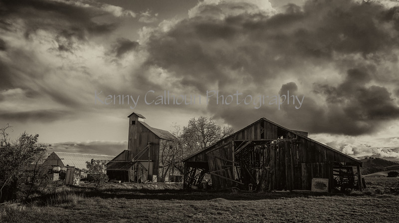 Tule Farms and Hungry Hollow_N5A6905-Edit-Edit