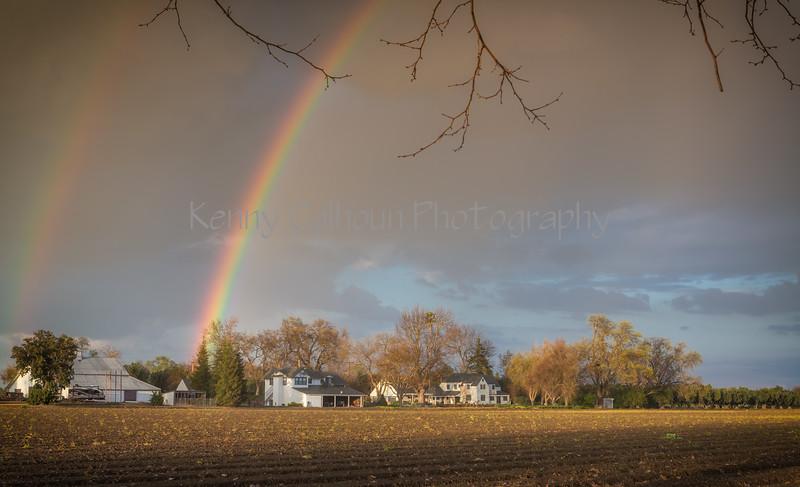 Kims House Rainbow_N5A2526-Edit-Edit