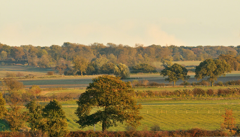 Northants in Autumn light