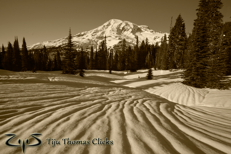 Mt Rainier National Park / Washington<br /> <br /> I took this snap while snowshoeing close to Paradise. I loved the texture made on the snow. I have no idea how it forms on the snow, but it looked amazing. I positioned myself so that the lines point toward Rainier. There was no special colour in the sky or on the mountain - so thought of converting it into Sepia.