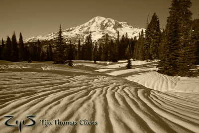 Mt Rainier National Park / Washington  I took this snap while snowshoeing close to Paradise. I loved the texture made on the snow. I have no idea how it forms on the snow, but it looked amazing. I positioned myself so that the lines point toward Rainier. There was no special colour in the sky or on the mountain - so thought of converting it into Sepia.