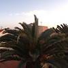 Casa Marco, Corralejo, Fuerteventura, Winter 2012
