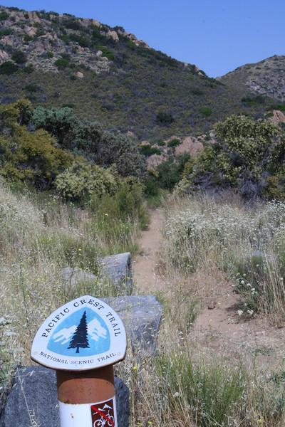 Pacific Crest Trail at Kitchen Creek