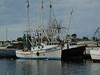 Sponge Docks- Tarpon Springs, FL