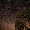 Back Garden Star Trails