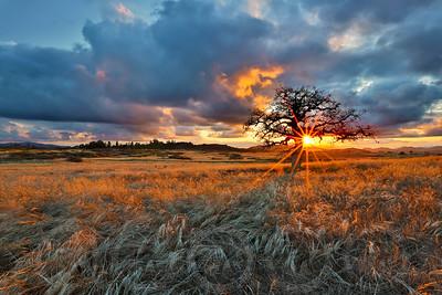Summer Sunset at Wrights Field Alpine, CA
