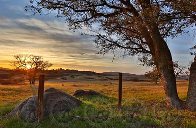 Golden Sunset @ Wrights Field