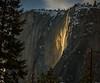 Yosemite Fire Falls-0494