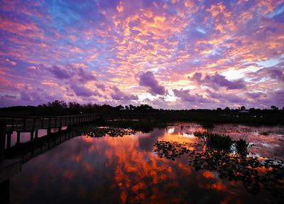 Sunrise @ Wakodahatchee Wetlands Delray Beach, Florida © 2010
