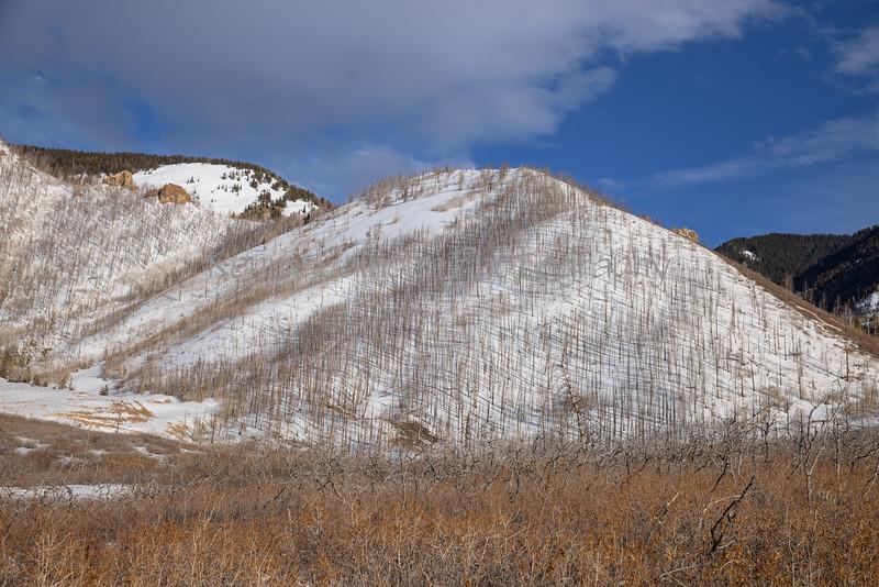 3-29-21 Fissures, Castle Creek Loop-9936