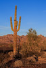 Kofa_Mountain_Sunset_December_12,_20121N5A8863untitled