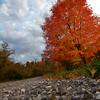 JPG-DLS-Nov2011-_MG_0898_HDR