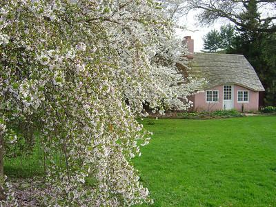 Pink cottage at Planting Fields Arboretum