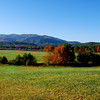 Mt. Autumn