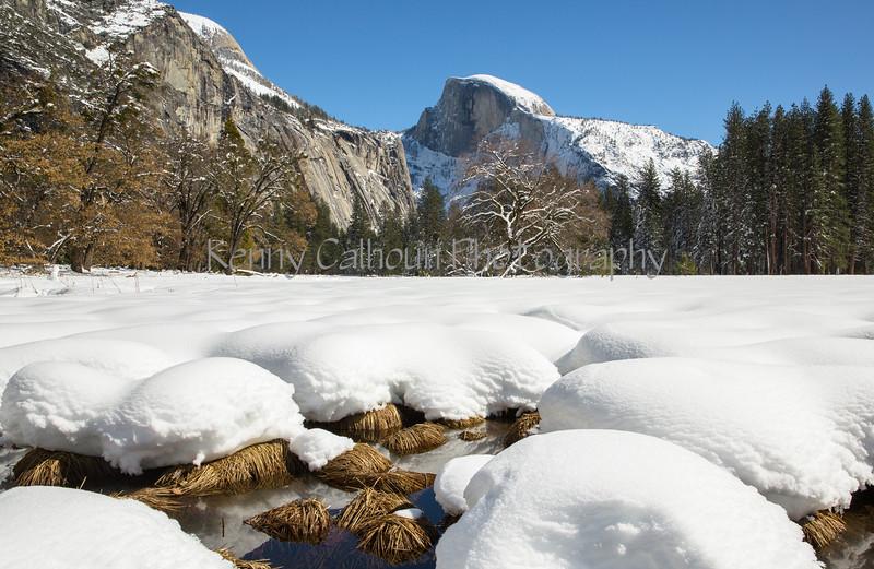 Yosemite Fire Falls-0251
