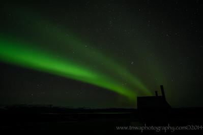 Look What Came to Visit ... the Aurora! Denali Highway Paxson, Alaska © 2014