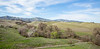 Bruces Oak Valley-1369