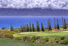 Hole #17.   Kapalua Plantation Course - Maui, Hawaii