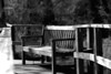12 March 2009 Landscapes - Sitting Bench (topaz simplify buzsim b&w softfocus))
