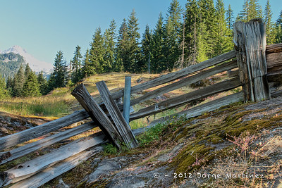 Mt  Rainier - Summer 2012 258