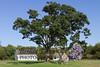 08-13-2012-Wehle_Park-1391-2