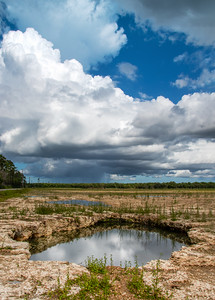 Everglades Storm Clouds
