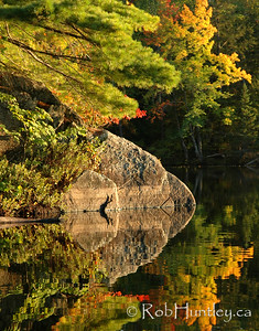 Autumn Reflection. Trees and boulder reflected in Lac a la Truite, near Wakefield, Quebec.